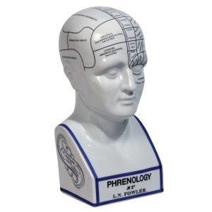 Authentic Models Phrenology Head Koristelu