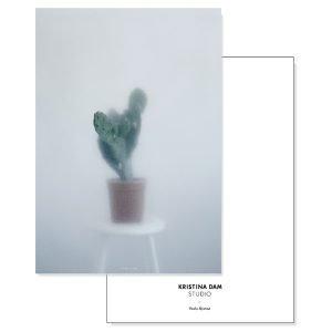 Kristina Dam Cactus Ii Postikortti