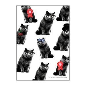 Lisa Bengtsson Cat Attack Juliste A3