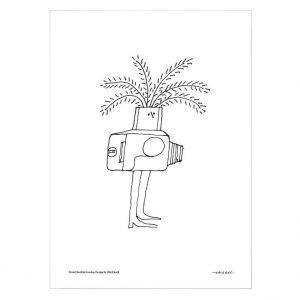 Olle Eksell Camera Juliste 50x70 Cm