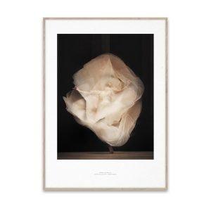 Paper Collective Essence Of Ballet 01 Juliste 50x70 Cm