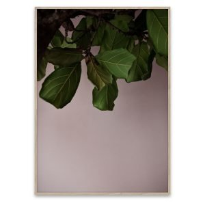 Paper Collective Green Leaves Poster Juliste 40x30 Cm
