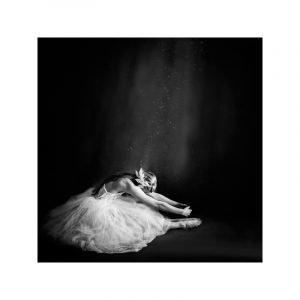 Selected By Walnutstreet Ballerina Iv Juliste 40x40 Cm